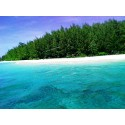 แพคเกจ ทัวร์ 4 เกาะ +  เกาะพีพี-อ่าวมาหยา-เกาะไผ่ พร้อมที่พัก(กระบี่) และรถรับ-ส่ง สนามบิน ( 3 วัน 2 คืน )