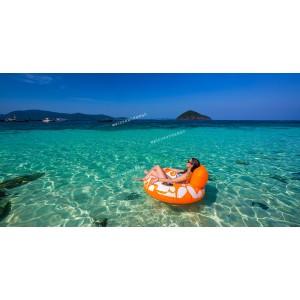 แพคเกจทัวร์ เกาะเฮ+ราชา Speed Boat +ชมโชว์โลมา พร้อมที่พัก(ภูเก็ต) และรถรับ-ส่ง สนามบิน (2 วัน 1 คืน)