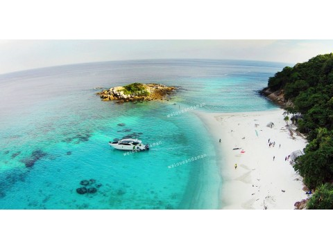 ทัวร์เกาะราชาน้อย(pirates beach) +เกาะราชาใหญ่ + เกาะไม้ท่อน  1 day