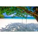 แพคเกจทัวร์ เกาะบรูเออร์  1 วัน (เฉพาะวัน  พฤ, ศ, ส , อา) ( เกาะพม่า )
