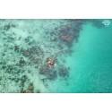 แพคเกจทัวร์ เกาะฮันนีมูน Honeymoon Island (เรือออกวันเสาร์)
