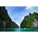 แพคเกจทัวร์อ่าวพังงาด้วยเรือ Speed Boat+เกาะพีพี-เกาะไผ่+ ชมการแสดงโลมา พร้อมที่พัก(ภูเก็ต) และรถรับ-ส่ง สนามบิน ( 3 วัน 2 คืน )