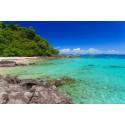 แพคเกจทัวร์เกาะสุรินทร์+เกาะไม้ท่อนเรือยอร์ช Katamaran+เกาะพีพี-เกาะไผ่ Speed Boat+พร้อมที่พัก(ภูเก็ต) และรถรับ-ส่ง สนามบิน ( 4 วัน 3 คืน )