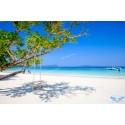 แพคเกจทัวร์ เกาะนาวโอพี 2 วัน 1 คืน/B.A. (  พักVilla  บนเกาะนาวโอพี ) ( เกาะพม่า )