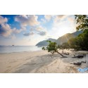 แพคเกจ 3 เกาะพม่า(เกาะหัวใจมรกต, เกาะฮอร์สชู, เกาะย่านเชือก) +เกาะนาวโอพี พร้อมที่พัก และรถรับ-ส่ง สนามบิน ( 4 วัน 3 คืน )
