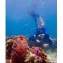 แพคเกจทัวร์ เกาะค๊อกเบิร์น + เกาะมุก  ( เกาะพม่า )