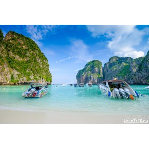 แพคเกจเกาะไม้ท่อน Catamaran +เกาะพีพี&เกาะไผ่ Speed Boat + ชมการแสดงโลมา พร้อมที่พัก(ภูเก็ต) และรถรับ-ส่ง สนามบิน ( 3 วัน 2 คืน  )
