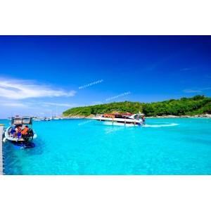 แพคเกจทัวร์เกาะราชา+ เกาะเฮ ด้วยเรือ Speed Boat + ชมโชว์สยามนิรมิต (+อาหารเย็น Buffet ที่สยามนิรมิต)+ ห้องพัก Hostel ( 3 วัน 2 คืน )