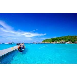 แพคเกจเกาะไม้ท่อน&เกาะเฮ ด้วยเรือยอร์ช Catamaran +เกาะราชา Speed Boat พร้อมที่พัก(ภูเก็ต) และรถรับ-ส่ง สนามบิน ( 3 วัน 2 คืน  )