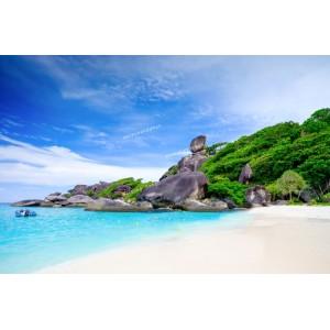 แพคเกจทัวร์เกาะสิมิลัน+เกาะราชา พร้อมที่พัก(ภูเก็ต) และรถรับ-ส่ง สนามบิน ( 3 วัน 2 คืน )