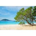 แพคเกจทัวร์เกาะสิมิลัน+เกาะสุรินทร์ พร้อมที่พัก(เขาหลัก) และรถรับ-ส่ง สนามบิน ( 3 วัน 2 คืน )