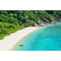 แพคเกจทัวร์เกาะสิมิลัน +เกาะไม้ท่อน Speed Boat+ชมโชว์สยามนิรมิต+ดินเนอร์ พร้อมที่พัก(ภูเก็ต) และรถรับ-ส่ง สนามบิน ( 3 วัน 2 คืน )