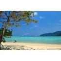 ทัวร์หมู่เกาะสุรินทร์ 2 วัน 1 คืน (พักเต๊นท์บนเกาะ)