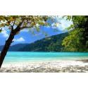 แพคเกจทัวร์เกาะสุรินทร์ +เกาะไม้ท่อน+ City Tour ภูเก็ต พร้อมที่พัก(ภูเก็ต) และรถรับ-ส่ง สนามบิน ( 3 วัน 2 คืน )