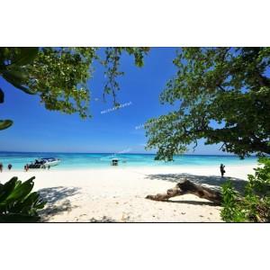ทัวร์เกาะตาชัย (1 Day Trip)